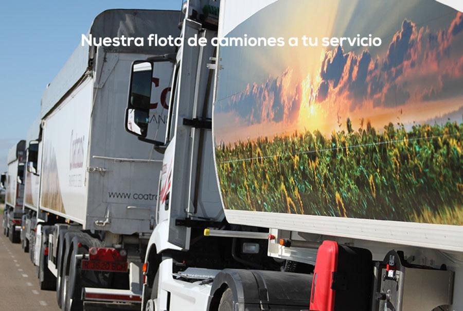 flota-camiones